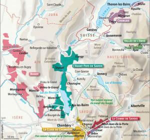 Les différents cépages de Savoie