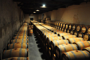 cave de vins bio