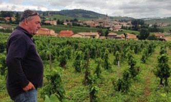 dégustation de vins et cours œnologiques: Domaine de la Grand' Cour