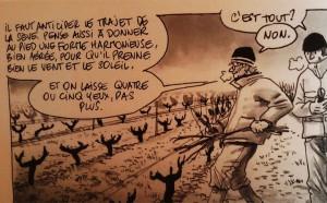 Dégustation de vin et cours d'œnologie : la taille de la vigne