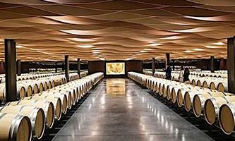 Tout savoir sur les vins primeurs : cours d'oenologie et dégustation de vin