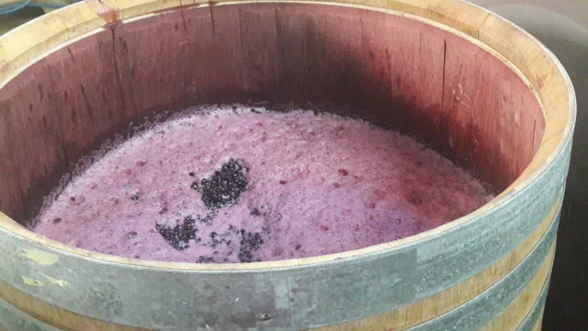 Un vin doux naturel, ou vin muté, est un vin dont la fermentation a été stoppée par l'ajout d'alcool à 90%