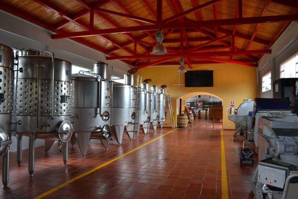 Arômes secondaires du vin : La fermentation