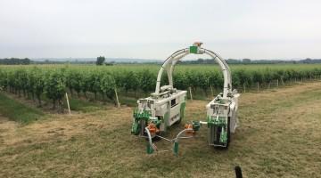 robotisation des vignes