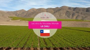 vins du Chili